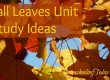 Fall Leaves Unit Study Ideas