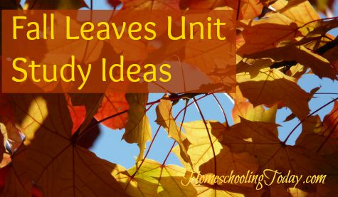 Fall Leaves Unit Study - Homeschooling Today Magazine
