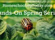 Hands-On Spring Science Ideas