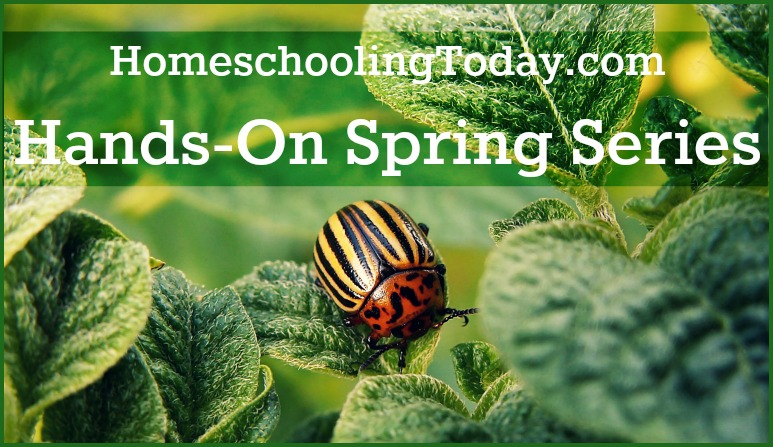 Hands-On Spring Science | Homeschooling Today Magazine
