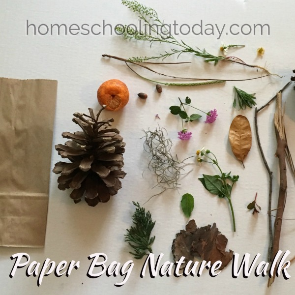 paper bag nature walk